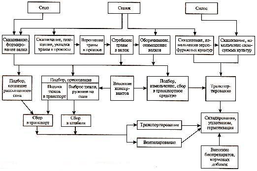 последовательность основных операций уборки кормов