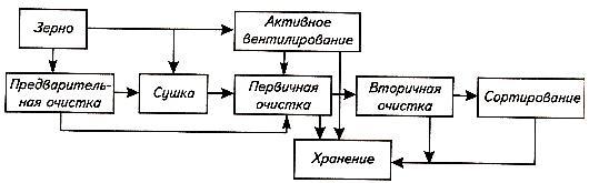 Последовательность процесса послеуборочной обработки зерна