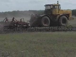 Трактор К-701 со стерневым культиватором видео