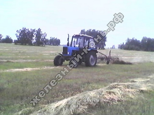 Трактор МТЗ-82.1 с граблями-ворошилками в работе фото