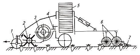 Ботвоуборочная прицепная машина МБП-6. Схема работы