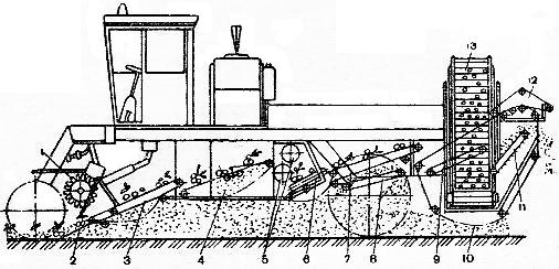Технологическая схема работы картофелеуборочного комбайна КСК-4-1