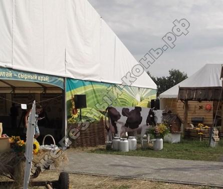 «Алтай-сырный край», экспозиционная площадка агрофорума | Всероссийский день поля 2016